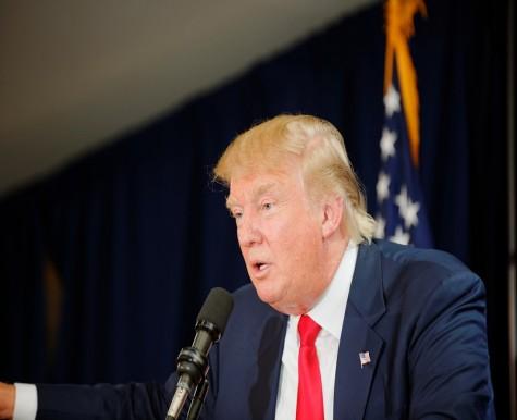 Has he got the Donald Trump card?