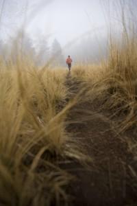 Running Away - a short story