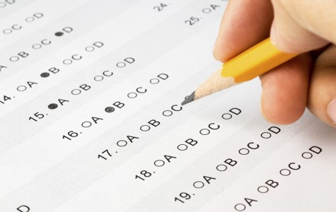 Another year of excellent IGCSE results