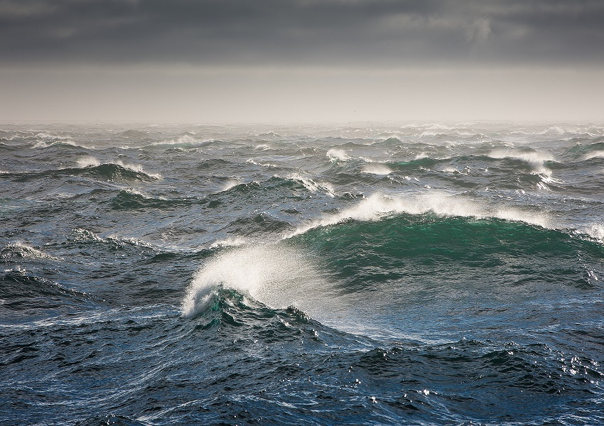 I am Tsunami